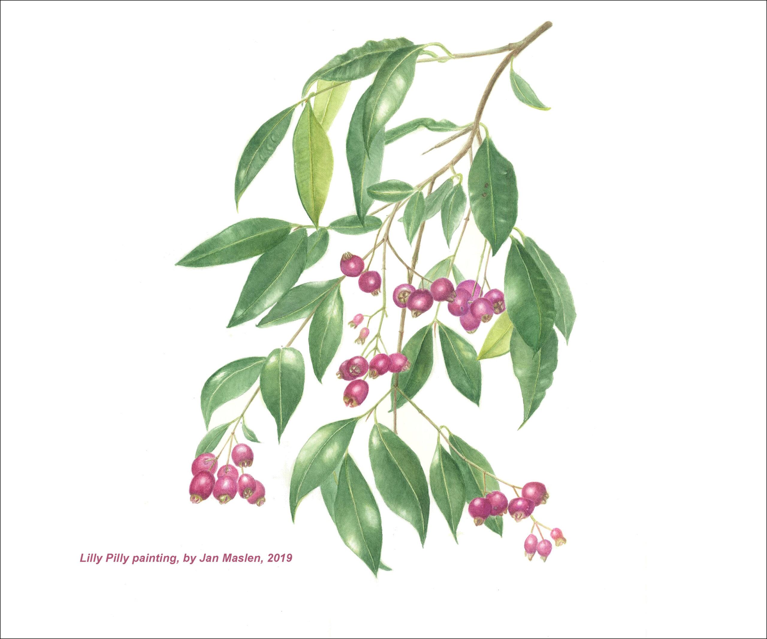 Botanical Illustrators
