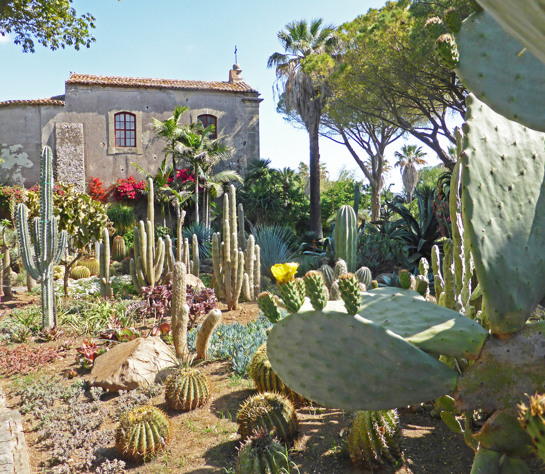 A Recently Renovated Cacti Planting In Front Of The 15th Century Villa San Giuliano Near Lente.