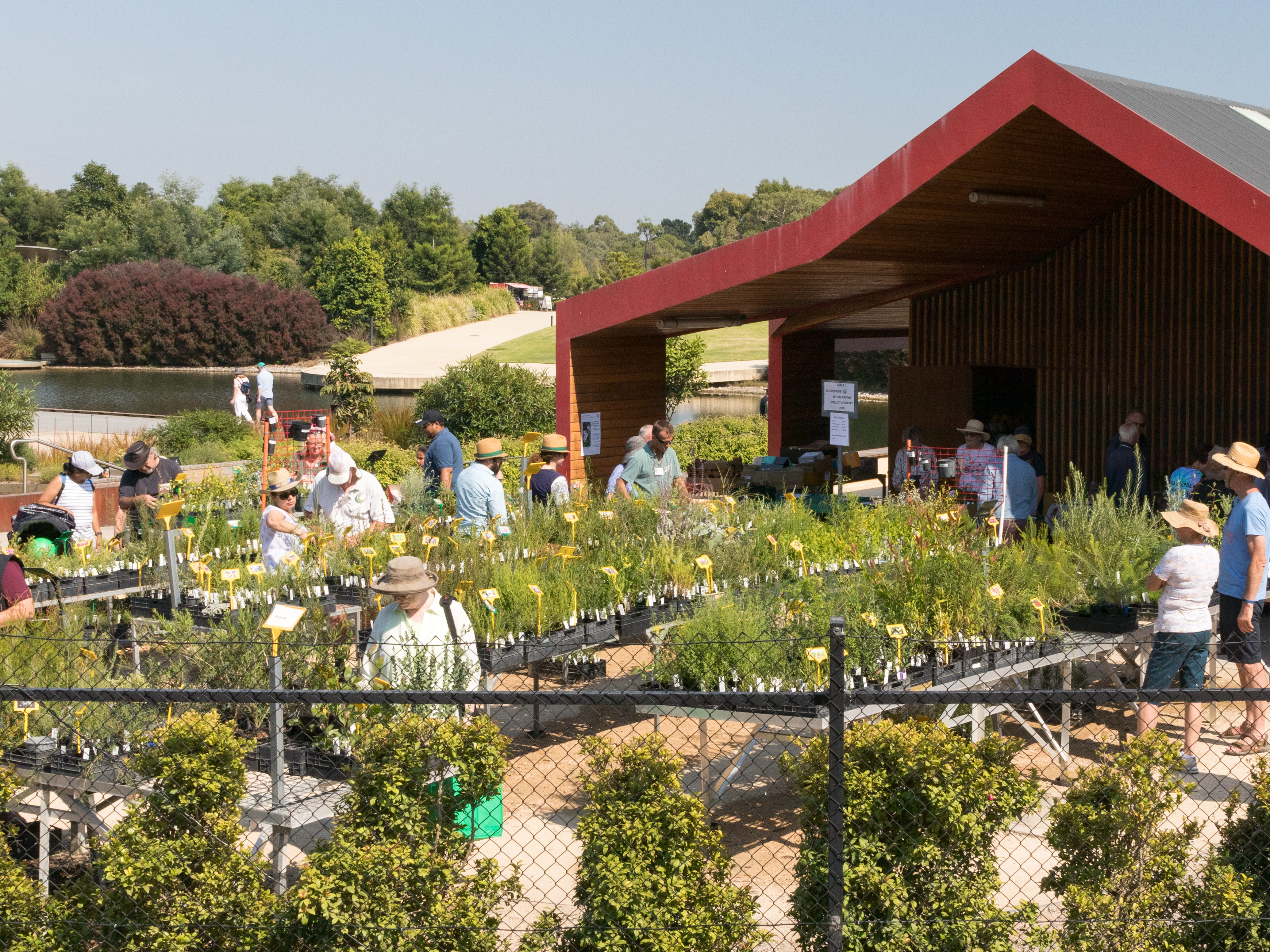 Growing Friends Plant Sale 8-9 May Is Going Ahead