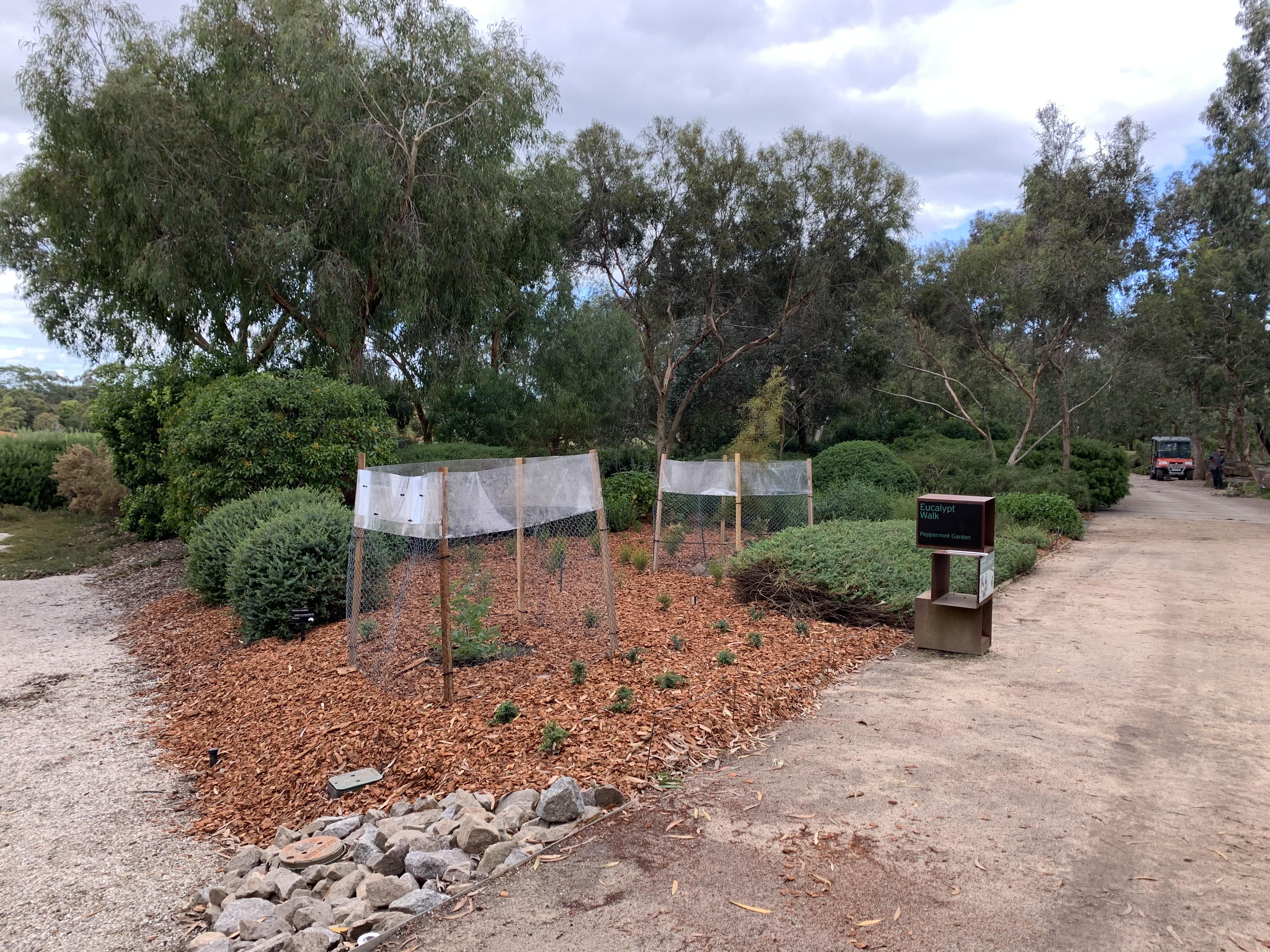Gardens Reopen