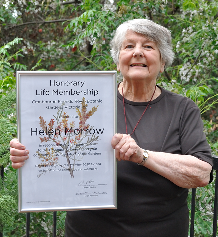 Honorary Life Member Appointed