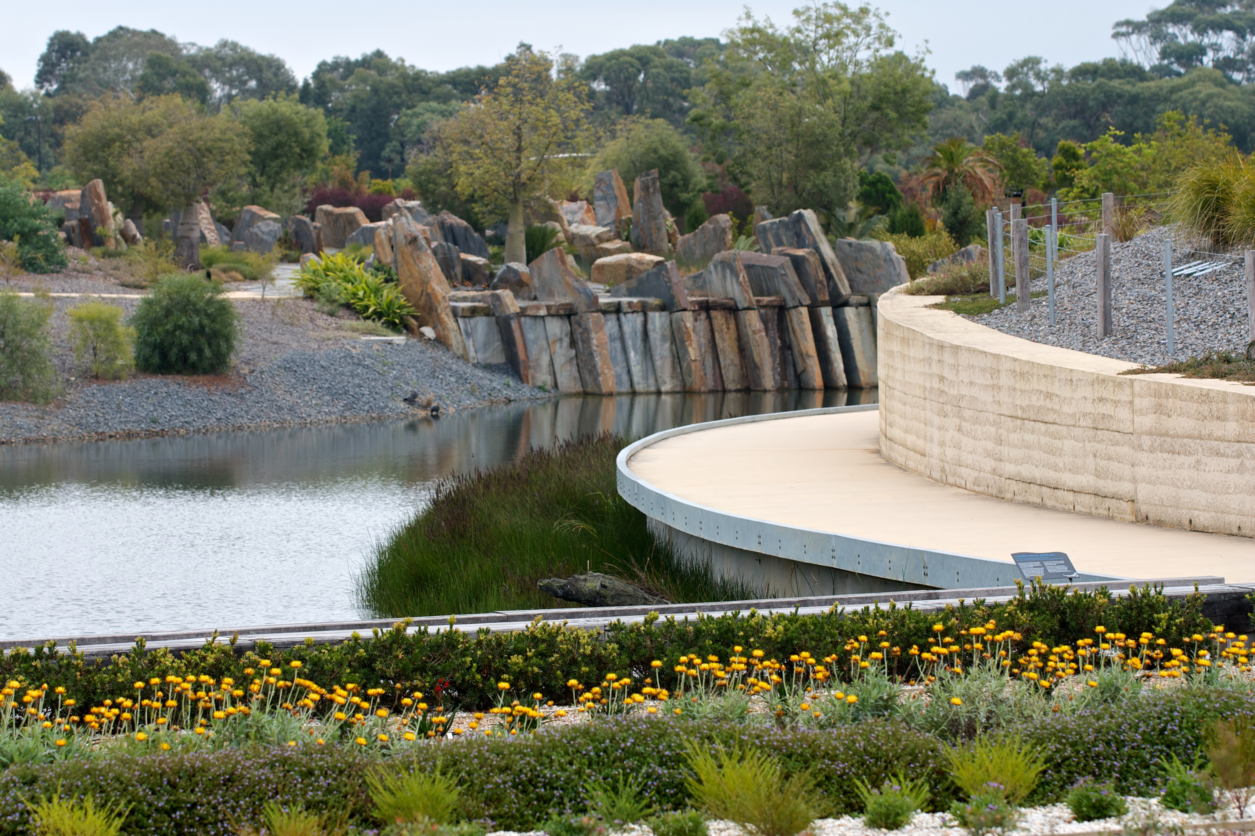 Lake view from the display gardens at Cranbourne Gardens. Image by Amy Akers